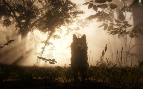 Wolf im Wald (Red Dead Redemption 2)